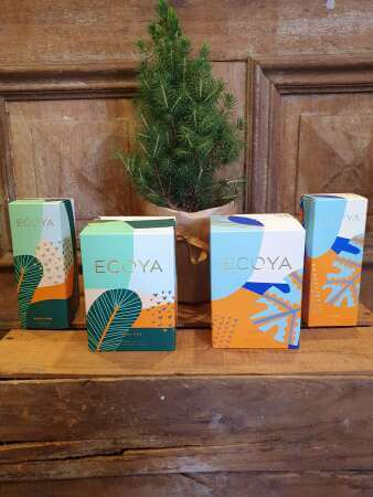 Ecoya Christmas Candles & Diffusers