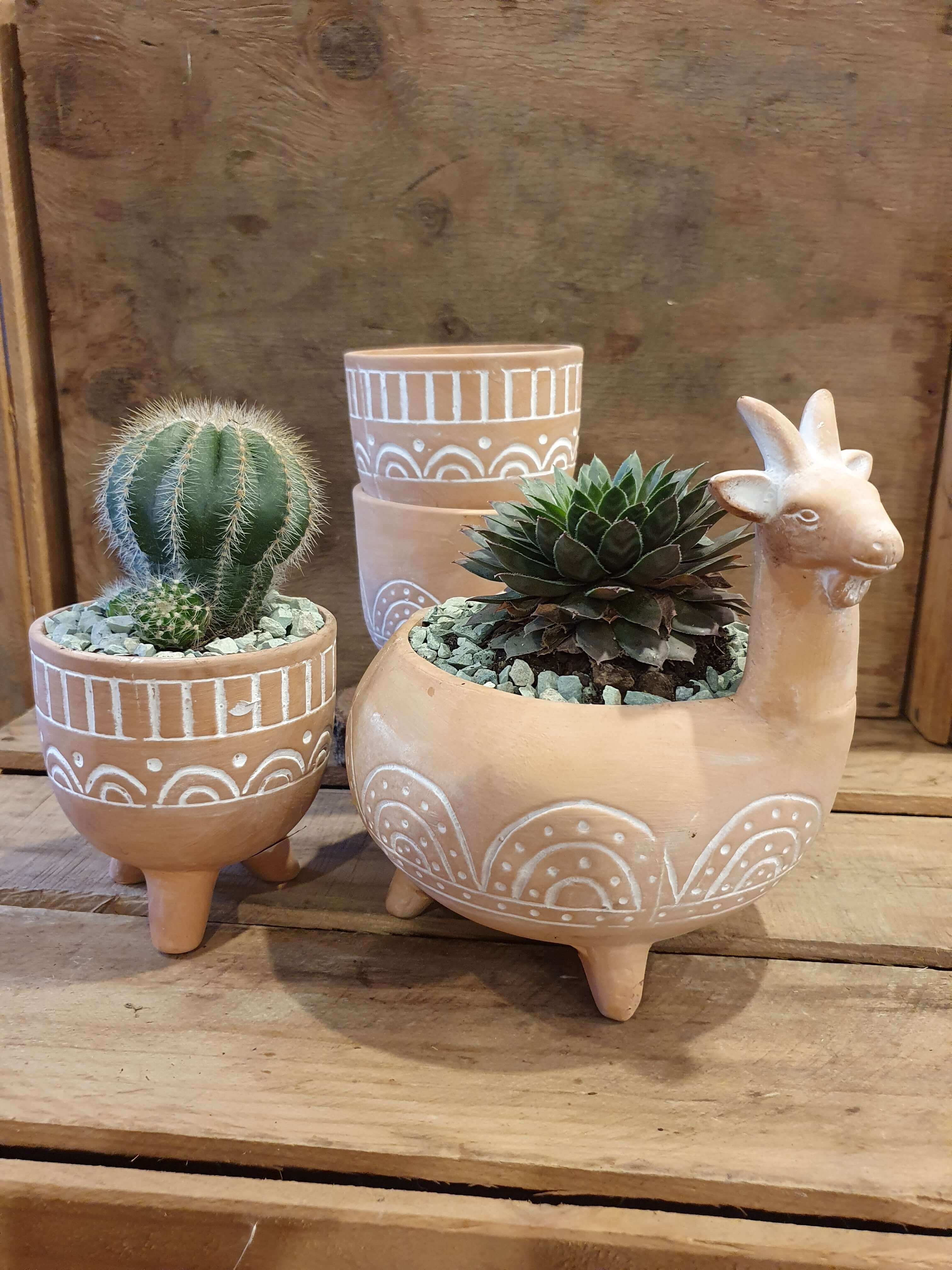 Lemo Goat Planter with assorted cacti